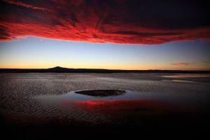 Priroda/National Geographic Photo Contest